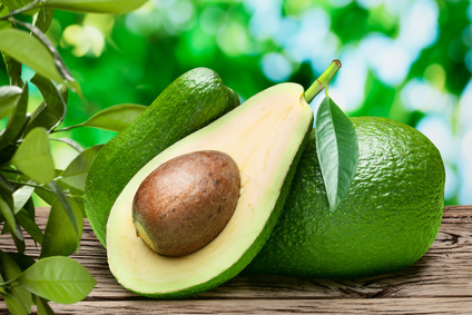 Can My Dog Eat Avocados?