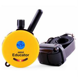 Educator E-Collar for training