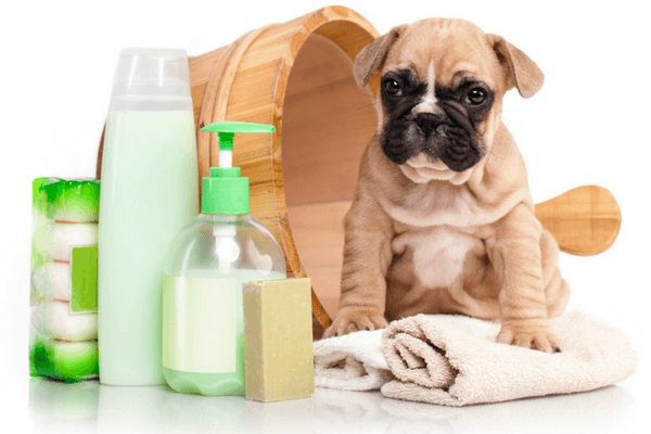 Tick And Flea Shampoo For Dogs