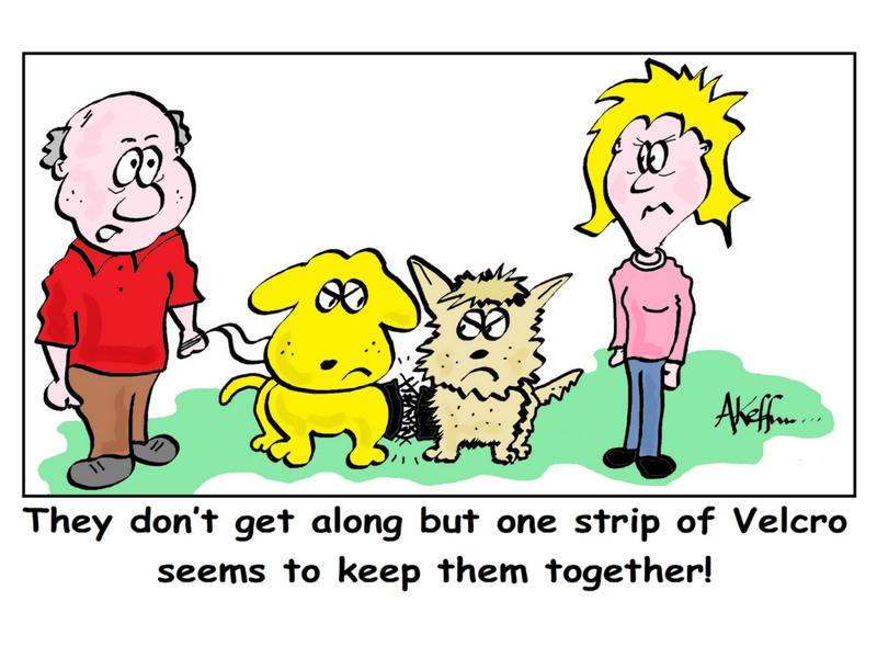 How To Socialize Your Dog Humor Cartoon
