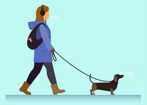 Girl Walking Dog With Leash For Dog Walking