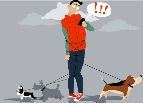 Guy wrapped-up In Dog Leashes