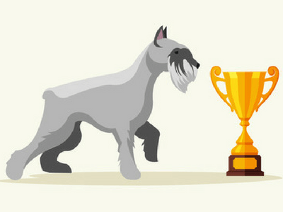 Dog With Docked Tail And Trophy