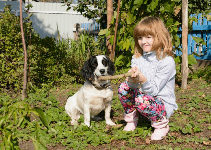 Girl Training Dog In Gardening