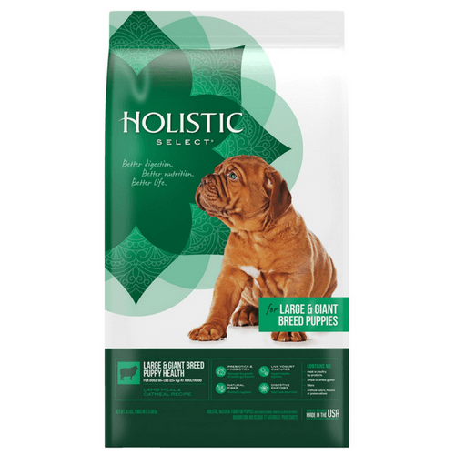 Holistic Select Natural Large & Giant Breed Dry Puppy Kibble