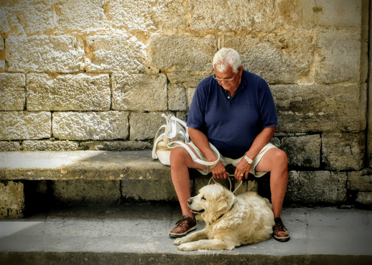Man With Labrador Guide Dog