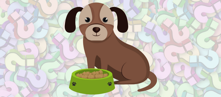 Dog With Bowl Of Grain Free Dog Food