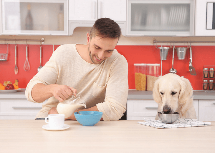 Dog And Owner Eating Together