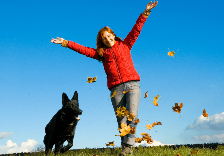 Monthly Payments Obedience Training Commands