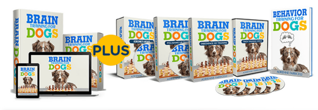 Brain Training For Dogs Course Material