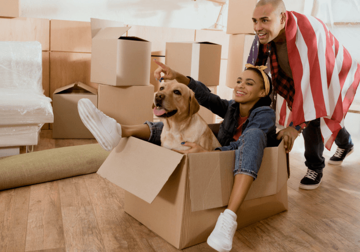Eleven Tips For Moving With A Dog