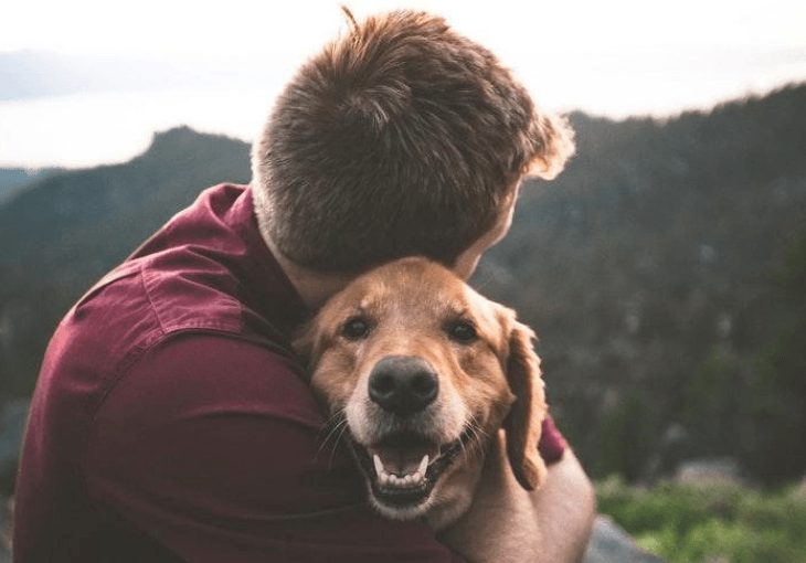 Benefits of Therapy And Emotional Support Dogs