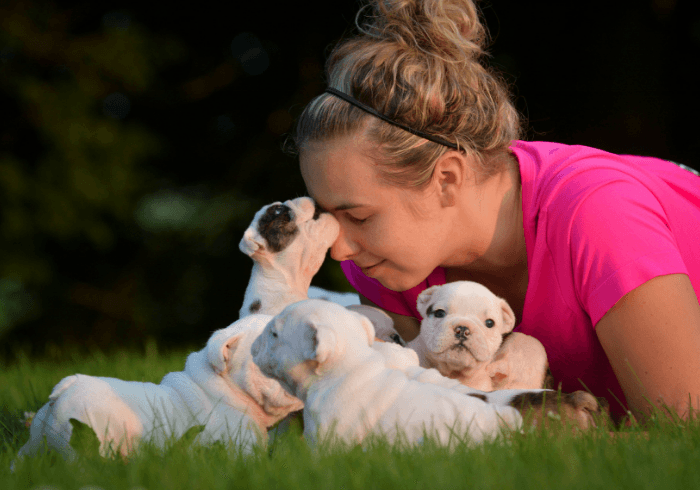 Dog Breeder With Her Puppies