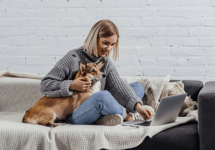 Young Woman And Canine Updating Records On Laptop