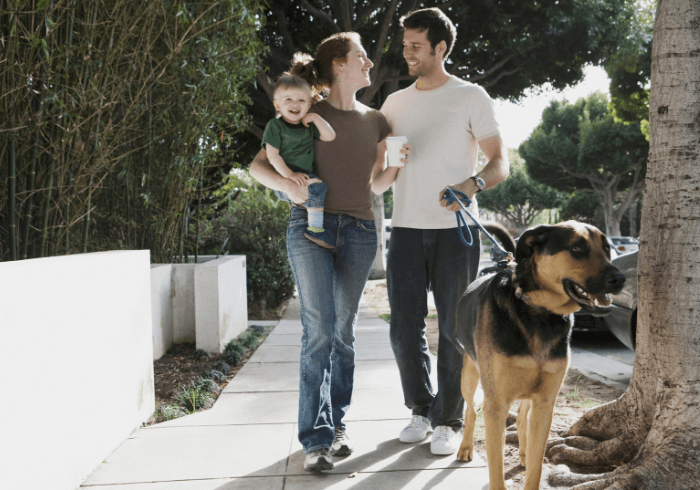 Young husband supporting the family by walking the dog