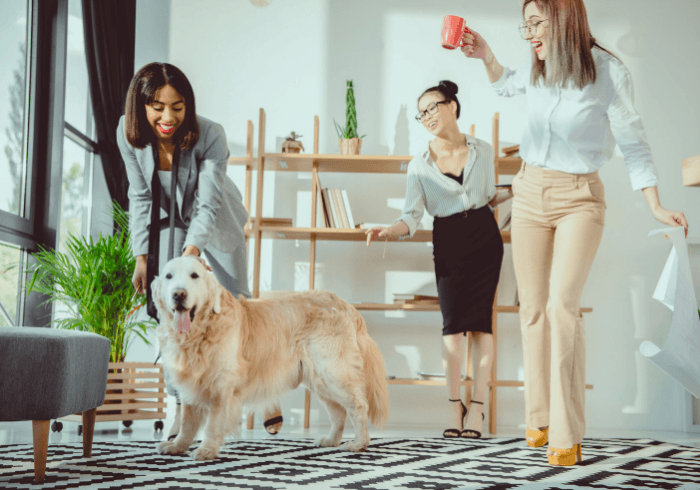 Happy employees with dog at the office