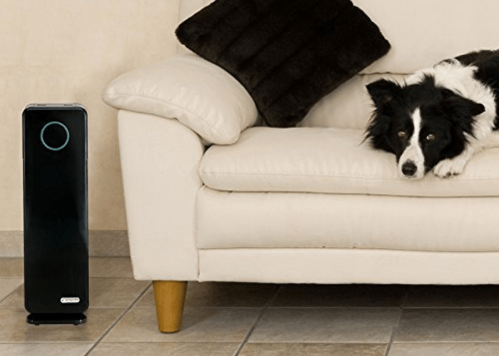 GermGaurdian air purifier for allergies and pets