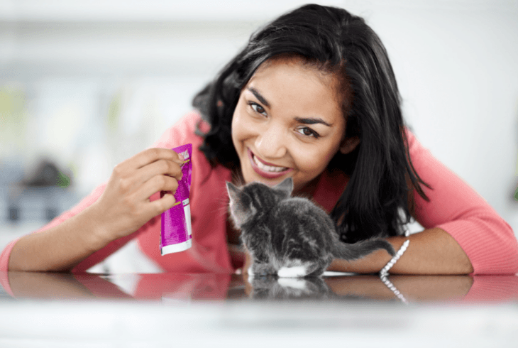 Young woman feeding her kitten life stage appropriate pet food