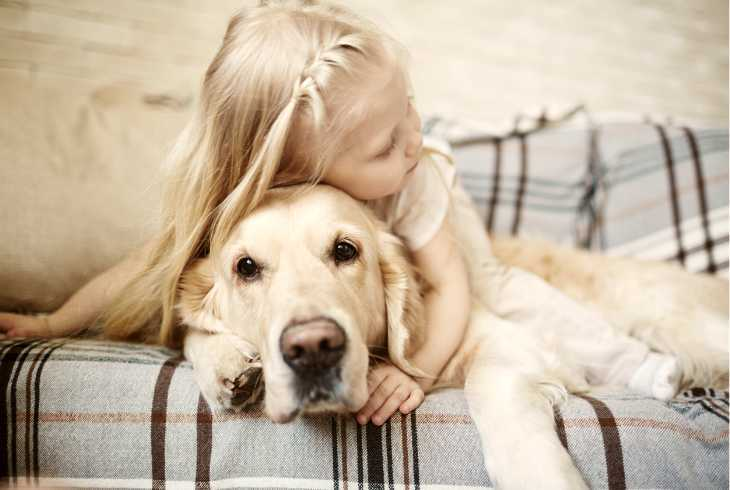 Golden Lab With Autistic Girl