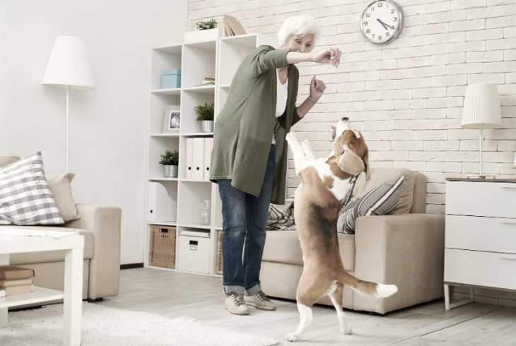 Woman training her dog with positive reinforcement