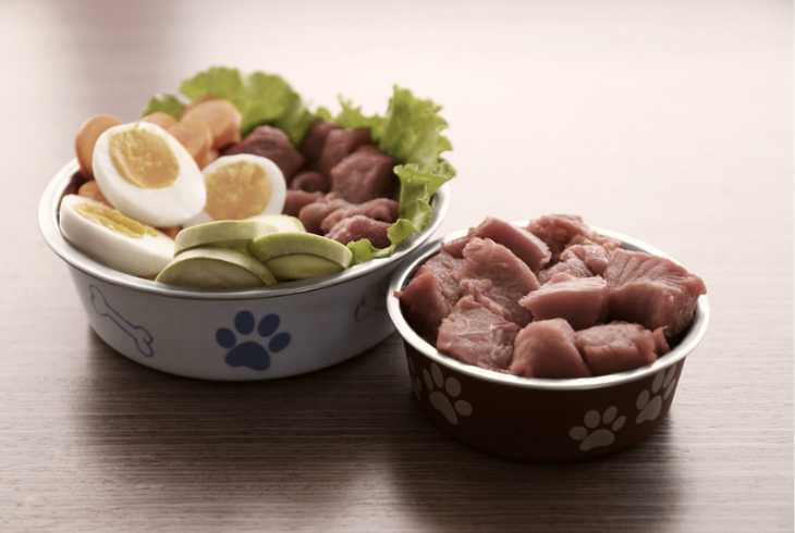 Dog food ingredients in dog bowls