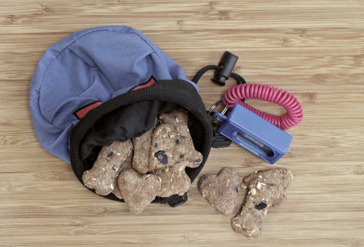Dog treats, training pouch and clicker