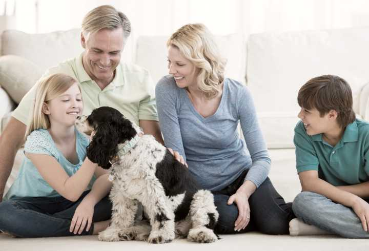 Happy family playing with new dog